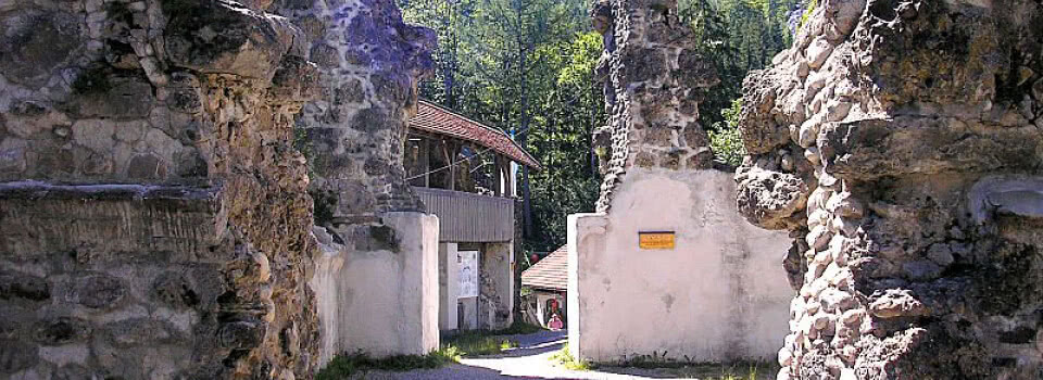Burgruine Alttrauchburg