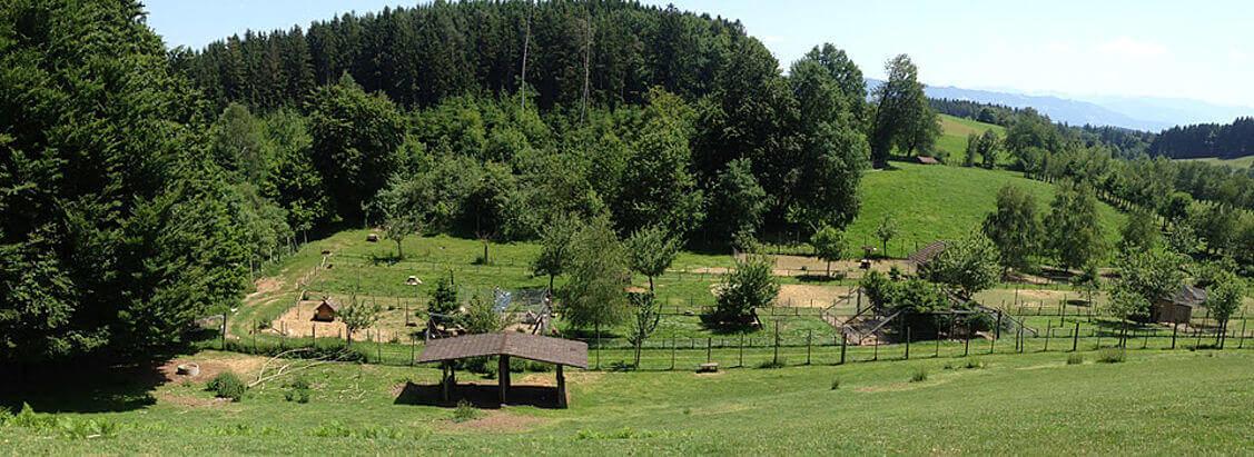 Wildpark Sonnenhalde / Neukirch